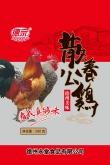 山东散养公鸡